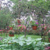 Кованые изделия в ландшафте сада
